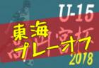 2018年度  高円宮杯U-15 東海リーグ 参入戦(プレーオフ)10/20結果速報!情報ありがとうございます!次回10/27