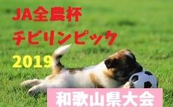 2018年度 JA全農杯チビリンピック2019 小学生8人制サッカー大会和歌山県大会 2/2,3開催!組み合わせ決定!西牟婁代表は1/20決定!