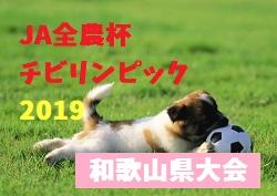 2018年度 JA 全農杯 全国小学生選抜サッカーin 関西 和歌山県大会(チビリンピック) 2/2,3開催!組み合わせ決定!西牟婁代表は1/20決定!