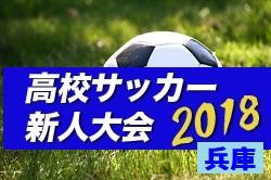 2018年度 兵庫県高校サッカー新人大会 いよいよ開幕!1/19結果速報!情報提供お待ちしています!