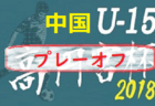 2018年度 JFA第42回全日本U-12サッカー 選手権大会岩手県大会 優勝はヴェルディ岩手!≪優勝チームコメント掲載!≫