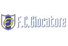 2019年度 Fantasista(ファンタジスタ)栃木【栃木県】ジュニアユース 練習会(毎週火曜・木曜) 開催のお知らせ