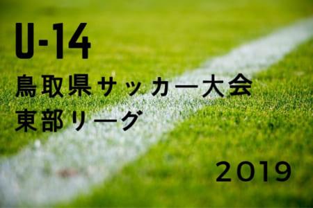 2019年度 U-14鳥取県サッカー大会 東部リーグ 全グループの順位決定!結果掲載!