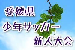 2018年度 第41回 愛媛県少年サッカー新人大会 優勝はFCゼブラキッズ!結果表掲載