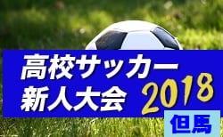 2018年度 兵庫県高校サッカー新人大会・但馬支部予選 優勝は近大附属豊岡!3位決定戦の結果情報提供お待ちしています!