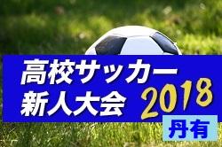 2018年度 兵庫県高校サッカー新人大会・丹有支部予選 県大会出場3チーム決定!結果詳細お待ちしています!