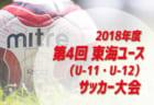 2次予選激闘中!【1次予選突破全35校】2018年度全国高校サッカー選手権大会東京都予選【1~35ブロック】35高校網羅しました