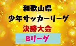 2018年度 第42回和歌山県少年サッカーリーグ決勝大会 Bリーグ 3/3開催!東西ブロック代表決定!
