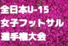 2018年度 第97回全国高校サッカー選手権大会 佐賀大会  優勝は龍谷(初優勝)!!結果表掲載