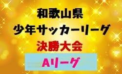 2018年度 第42回和歌山県少年サッカーリーグ決勝大会 Aリーグ 3/2,3開催!東西ブロック代表決定!