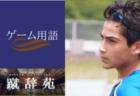 ジンガ【サッカー用語解説集】