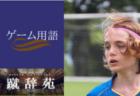 第2回高知県高等学校サッカー冬季大会(新人戦)優勝は高知!