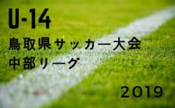 2019年度 U-14鳥取県サッカー大会 中部リーグ 結果掲載!各グループ順位決定!