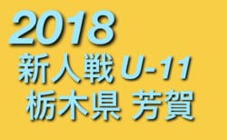 2018年度 第36回栃木県少年サッカー新人芳賀地区大会 U-11 組合せ決定!12/15~!!
