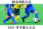 2018年度 第68回 神奈川県中学校サッカー大会 桐蔭学園がPK戦を制して優勝!