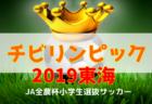 チビリンピック2019 JA全農杯小学生選抜サッカー IN 東海  3/30,31開催!情報お待ちしています!