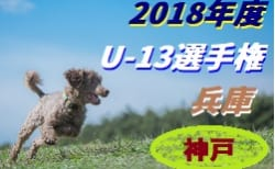 2018年度 第21回兵庫県中学生(U-13)サッカー選手権大会 神戸市予選 1/14全結果!2回戦は1/20!