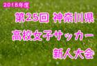 2018年度 神奈川県高等学校サッカー新人大会 川崎地区予選 1/20 関東2次予選シード決め&出場決定戦 結果速報!結果入力・情報をお待ちしています!