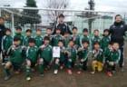 2018年度 湘南ブロック 中学校サッカー新人戦(神奈川県) 優勝は鵠沼中! 情報ありがとうございます!
