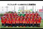2019年度  FCフェルボール.MIMOSA(愛知県)女子ジュニアユース入団練習会 12/12ほか開催!
