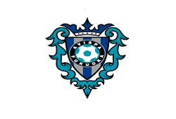2019年度 アビスパ福岡U-12(福岡県)セレクションのお知らせ!2/5他開催!2/4〆切!