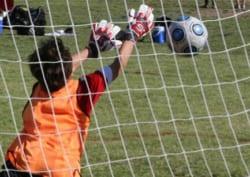 2018年度 東予地区少年サッカー大会【U-11】1/19.20結果速報!情報お待ちしています。