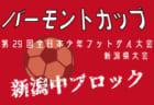 2018年度 日刊スポーツ杯第25回関西小学生サッカー大会(新人戦) 和歌山県大会 優勝はSC和歌山ヴィーヴォ!