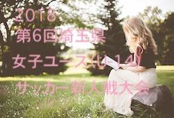2018年度 第6回埼玉県女子ユース(U-14)サッカー新人戦大会 優勝は白岡SCL!