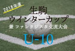 2018年度 生駒ウインターカップ兼ファンタジスタ交流大会 U-10(奈良県)結果情報お待ちしています!