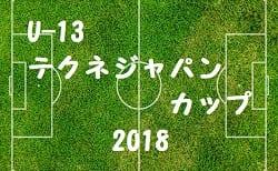 U-13 テクネジャパンカップ(京都府) 2018 2回戦結果速報!準決勝は2/24!