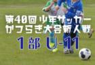 2018年度 第21回三田CUP サッカーフェスティバル(兵庫県) 2/2,3結果速報!情報お待ちしています