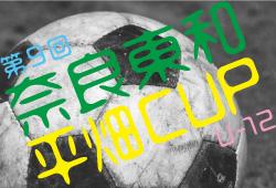 2018年度 第9回 奈良東和平畑CUP U-12【奈良県】結果速報!2/23,24情報お待ちしています