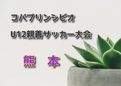 2018年度【熊本】第8回コパプリンシピオU12親善サッカー大会 3/2・3結果情報お待ちしています