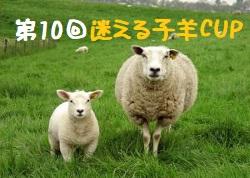 2018年度 第10回迷える子羊CUP【兵庫県開催】 優勝は太子西中、安室中!まだまだ情報提供お待ちしています!