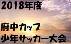 2018年度 府中カップ少年サッカー大会【東京】 6年生の部 優勝は新町FC!