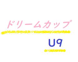 【宮崎県】ドリームカップ2019 in 新富町(U9)優勝はアスランFC 1!