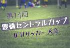 2018年度 愛知 第14回豊橋セントラルカップU-11サッカー大会【組み合わせ掲載】3/2,3開催!