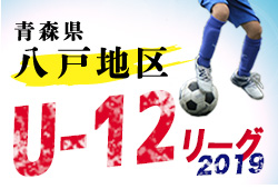 大会情報募集 U-12リーグ八戸地区 | JFA U-12サッカーリーグ2019青森㏌八戸地区