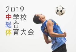 2019年度 茅ヶ崎地区中学校総合体育大会サッカー競技の部 兼 神奈川県中学校総合体育大会予選会