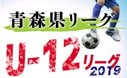 JFA U-12サッカーリーグ2019青森県リーグ リーグ表更新(8/14現在)次回9/7開催!