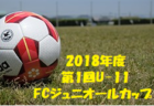 レノファ山口優勝 第1回U-11FCジュニオールカップ 3/16,17 | 2018年度 第1回U-11FCジュニオールカップ 大分