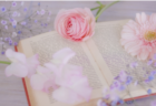 北海道・東北地区の今週末の大会・イベント情報【3月23日(土)、24日(日)】