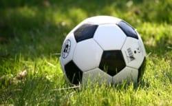 2019年度 第7回座間市商連杯争奪ジュニアサッカー大会(5年8人制) 優勝はFCレガーレ!神奈川