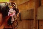 中高一貫校の挑戦。「僻地」をハンデとせず日本一を目指す日章学園高校・早稲田 一男 監督インタビュー