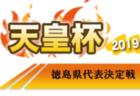 2019年度 第73回愛知県高等学校総合体育大会サッカー競技 東三河 インターハイ 優勝は豊川高校