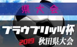 組合せ掲載 ブラウブリッツ杯県大会U12 | 2019年度 第9回ブラウブリッツ杯秋田県大会