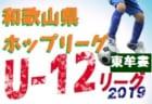 2019年度U-12リーグ 第43回全日本少年サッカー大会 北河内地区(大阪)中央大会出場全チーム決定!