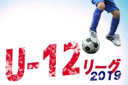 2019両毛地域リーグU12 前期 4/13,14結果掲載 | 2019両毛地域リーグU12 前期 栃木