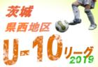 2018年度 第33回笠岡市サッカーフェスティバル 少年の部(新6年生) 優勝は三福サッカークラブ!