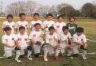 2019年度 丹有U-12リーグ 兼 JFA第43回全日本U-12サッカー選手権大会 兵庫大会 丹有予選